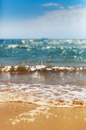 calm Coastline with wave