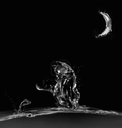 Photo pour Un chat fait d'eau assis sur l'eau au clair de lune en regardant un poisson sauteur. - image libre de droit