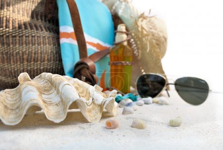 giant clam and beach accessories