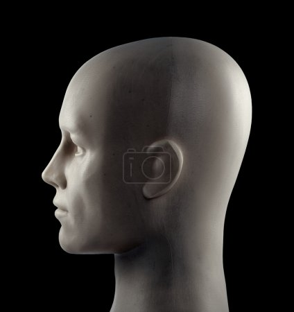 Mannequin head on black background with clipping path