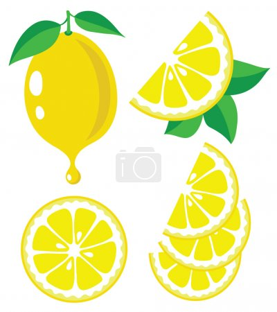 Illustration for Collection of lemons vector illustrations - Royalty Free Image