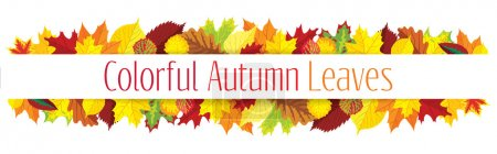 Illustration for Colorful autumn leaves border, vector illustration - Royalty Free Image