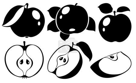 Collection of monochrome apples, vector illustrati...