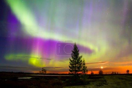 Nordlichter (Polarlichter))