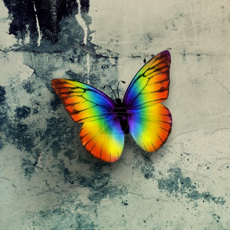 Photo for Colorful butterfly on grunge wall surface - Royalty Free Image