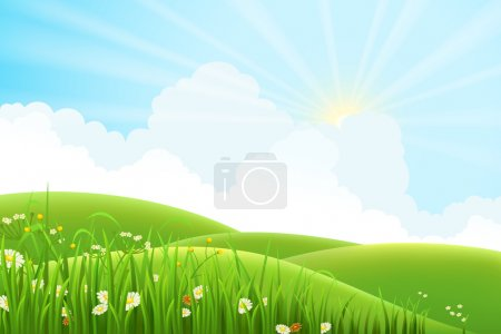 Illustration for Summer sunny meadow landscape, vector illustration - Royalty Free Image