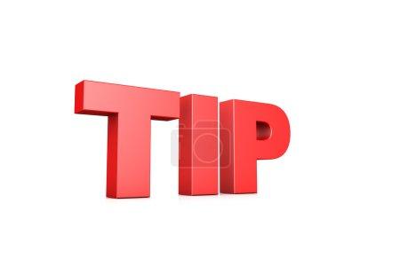 3d illustration word tips