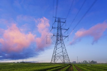 Electricity pylons in field with skyline