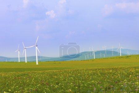 Wind turbines on the green grass