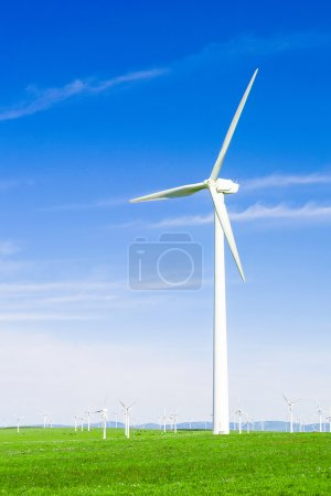 Wind turbine and meadow