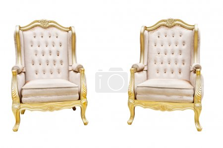 two luxury leathered chairs