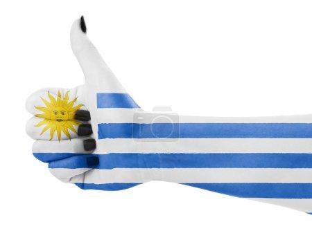 Photo pour Drapeau de l'Uruguay sur la main des femmes - image libre de droit