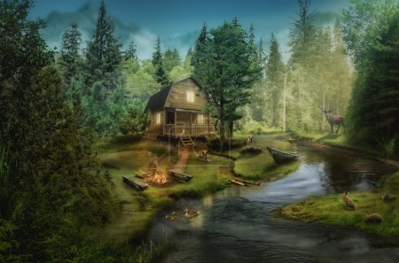 house by the creek