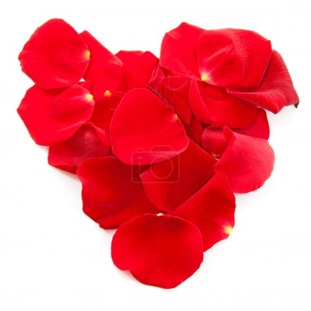 Red rose petals in shape of heart