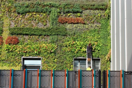 Photo for People working on a vertical garden in Camden Town, London - Royalty Free Image