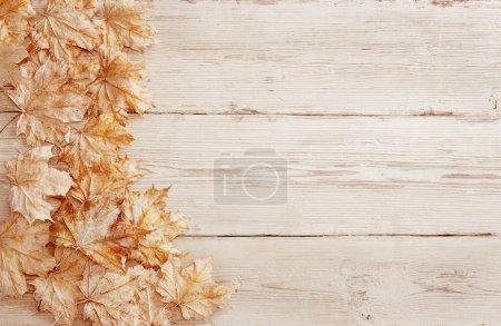 Photo for Wood Background White Leaves, Wooden Grain Texture, Decorative Plank Leaf Design - Royalty Free Image