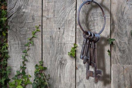 Ancient key ring, rustic garden