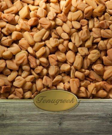 Fenugreek seeds labeled