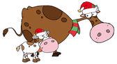 Veselé svátky tele a kráva