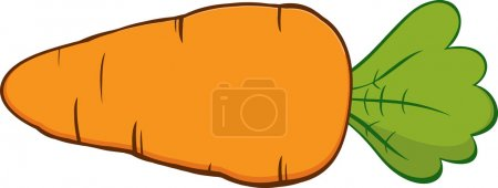 Cartoon Carrot. Vector Illustration Isolated on wh...