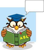 Owl Teacher with  ABC Book