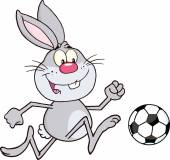 Rabbit Playing With Soccer Ball