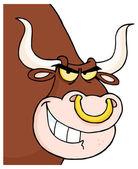 Ngry Longhorn hlavou při pohledu