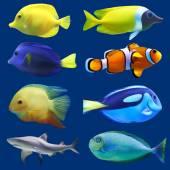 Set of tropical fish Vector illustration