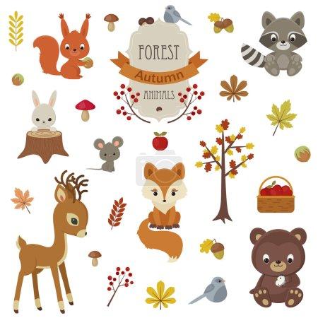 Woodland animals in autumn time.