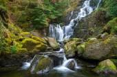 Vodopád Torc v národního parku killarney