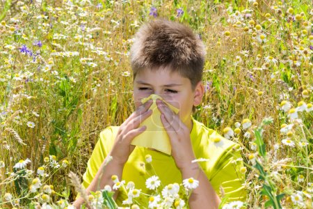 Boy with allergic rhinitis in  meadow