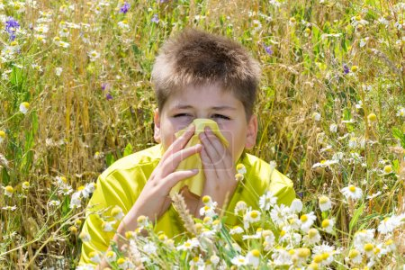 Photo pour Garçon souffrant de rhinite allergique dans la Prairie - image libre de droit
