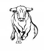 bull attacks illustration