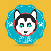 dog pet care icon