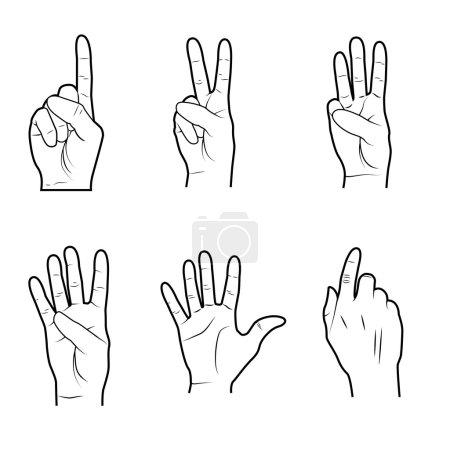 Illustration for Hands signals over white background vector illustration - Royalty Free Image