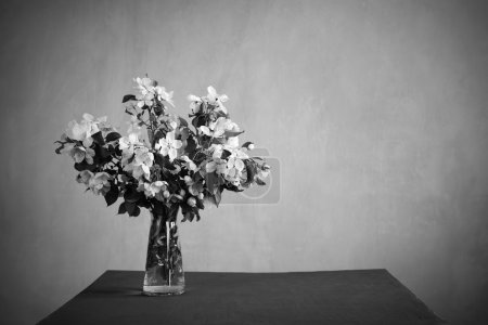 Bunch of blooming twigs on a table in monochrome. ...