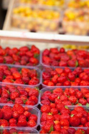 Photo pour Fraises biologiques naturelles dans des boîtes à un marché fermier - image libre de droit