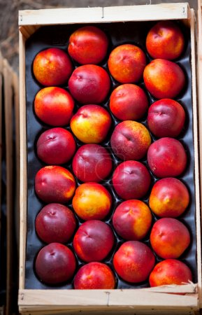 Fresh nectarines selling in a market