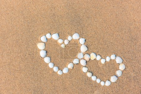 sea shell hearts on the sand beach