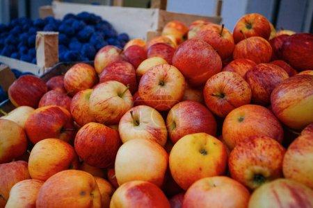 Photo pour Gros plan de pommes rouges et jaunes fraîches - image libre de droit