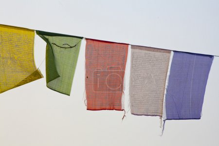 Buddhist praying flags in Lumbini