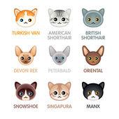 Cute cat icons set III