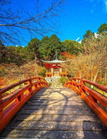 Photo pour Temple bouddhiste Daigo-ji à Fushimi-ku, Kyoto, Japon . - image libre de droit