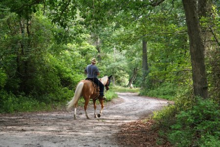 Photo for Man Horseback Riding - Royalty Free Image