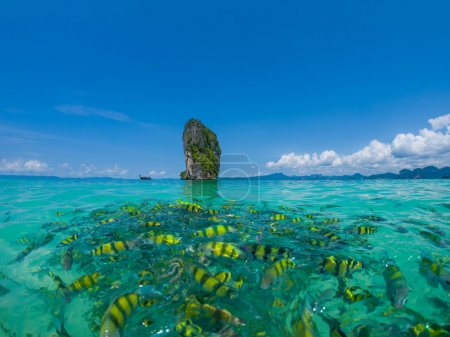 fish in the clear azure water, Poda beach