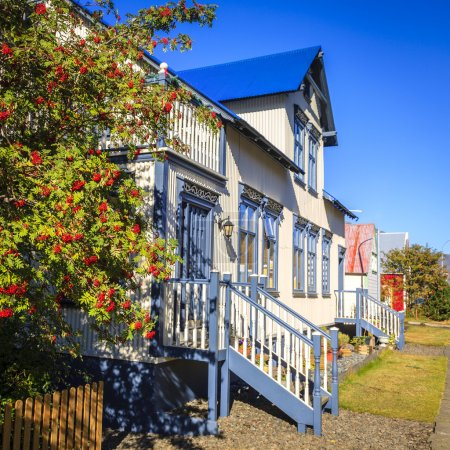 Photo for Traditional house in Seydisfjordur, Iceland with mountain ash tree in foreground - Royalty Free Image