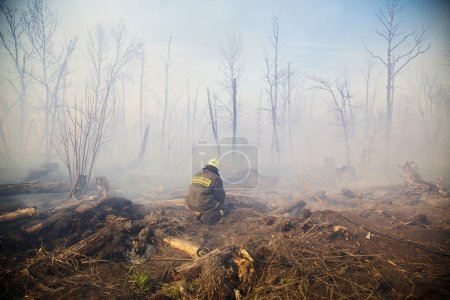 """Photo for The fire brigade Russian Emergencies Ministry is working on the site of forest fires in the area of the village """"March 8"""", Ufa area, Bashkortostan, Russia - Royalty Free Image"""