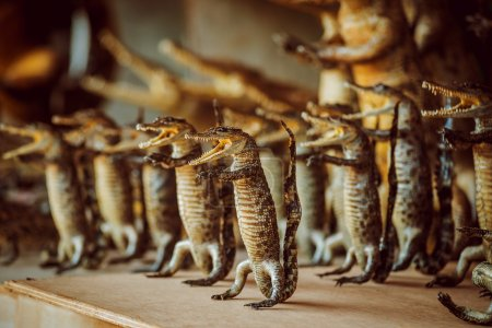 Photo for Colored crocodiles figures on wooden table - Royalty Free Image