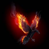 Black raven flying in the flame