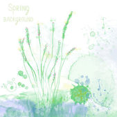 Spring spa background with herbs and grass